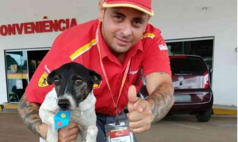 Após abandono e maus-tratos, cão é adotado e vira 'frentista' em posto de gasolina no Acre