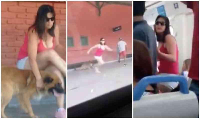 Mulher engana seu cachorro com carícias e o abandona em trem; assista ao vídeo