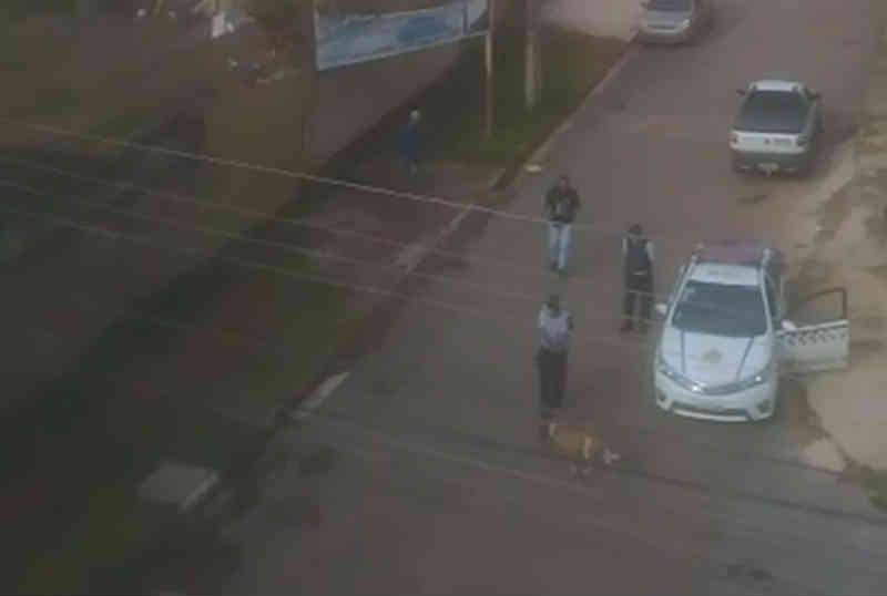 Vídeo: PM é chamada para conter cachorro e dispara 2 vezes contra o animal