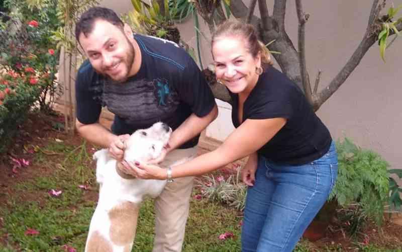Após mais de 300 ligações de interessados, cão que foi deixado correndo atrás de caminhão de mudança é adotado, em Goiânia
