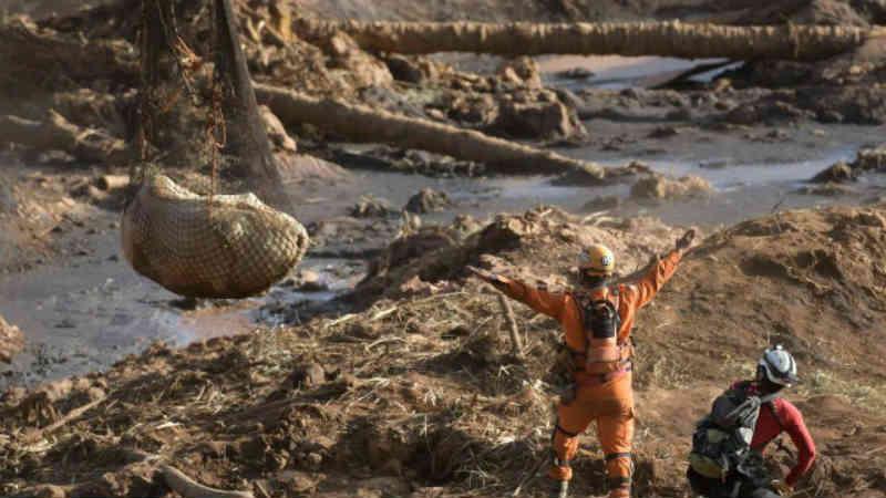 Após polêmica, novilho é resgatado com vida por bombeiros em Brumadinho, MG