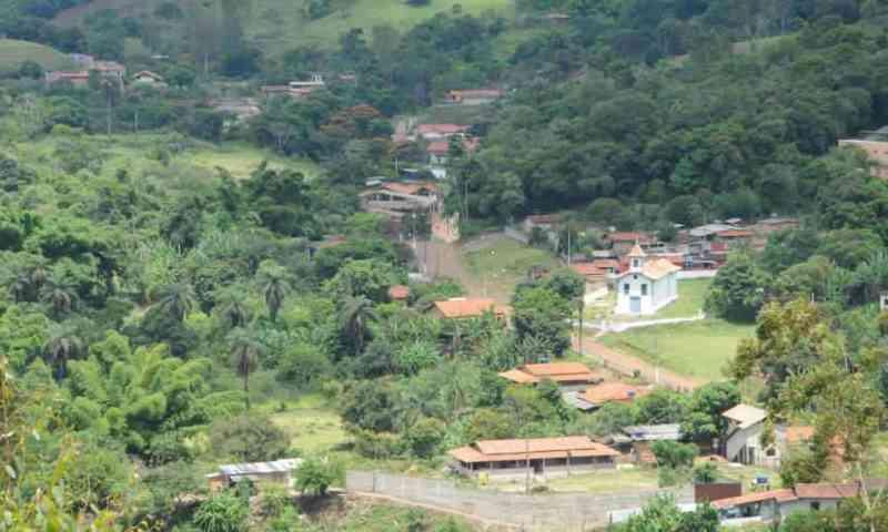 1.500 animais que estão na área de risco em Barão de Cocais (MG) foram alimentados