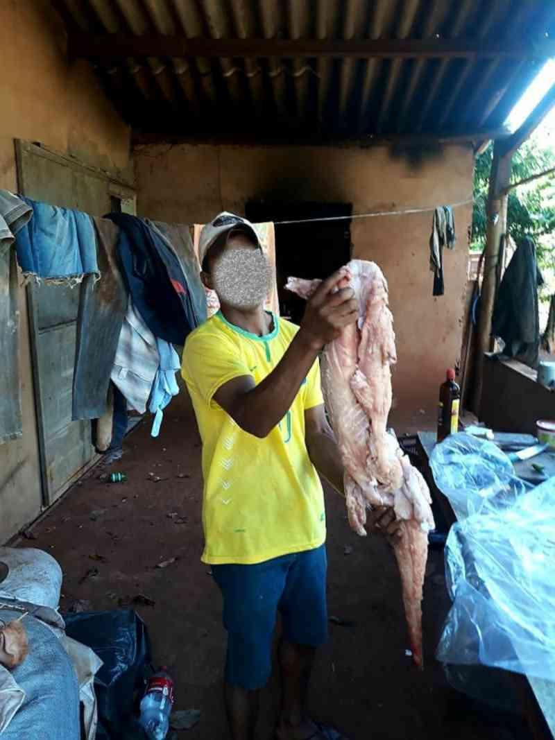 Caçador 'ostenta' abate de jacaré nas redes sociais e é autuado pela PMA em Campo Grande, MS