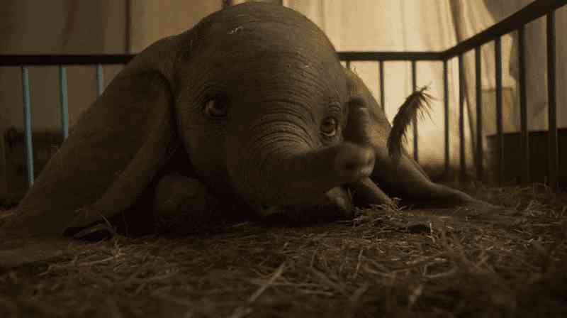 Trailer ridículo de filme mostra o cativeiro animal sob uma luz 'positiva'