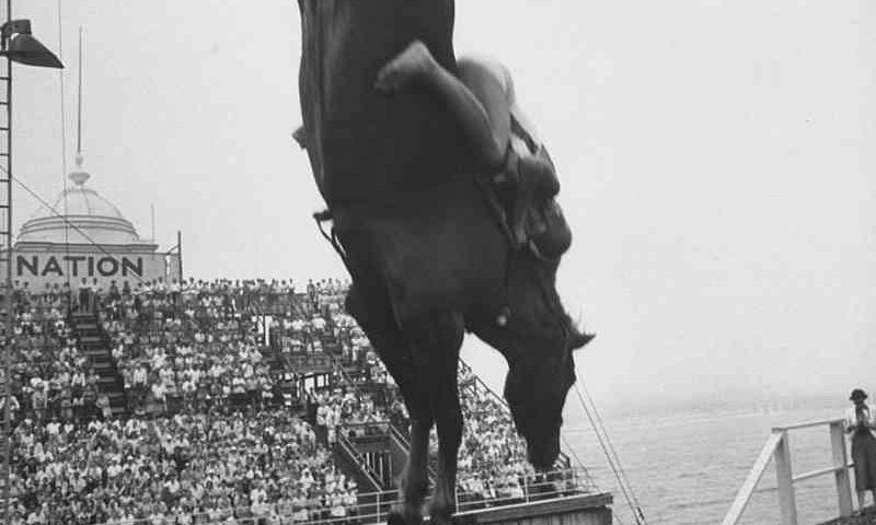 Mergulho de cavalo: 21 fotos antigas do cruel 'esporte' esquecido