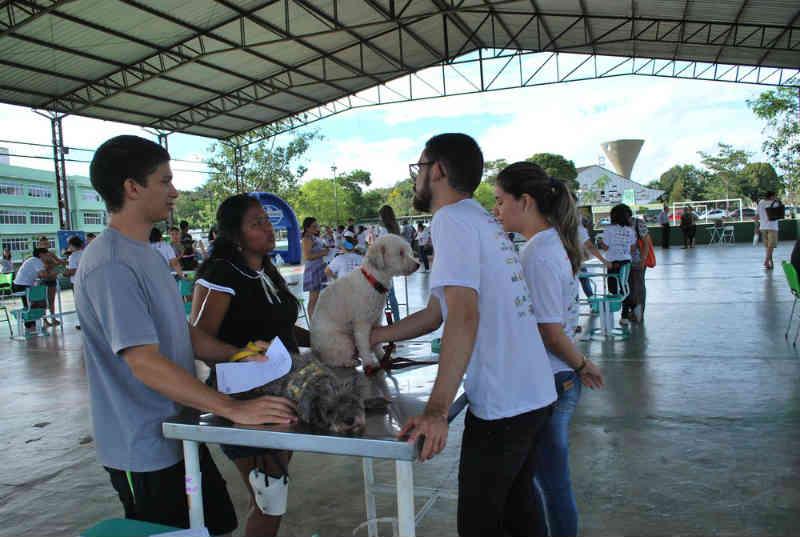 Ação oferece atendimento gratuito a cães e gatos na Ufra, em Belém