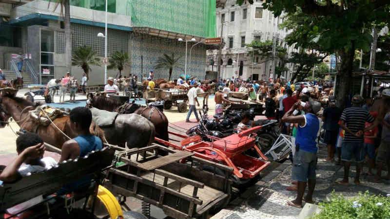 Decreto proíbe animais de carga e carroças puxadas por bichos em grandes avenidas do Recife