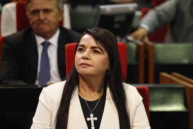Deputada quer punir empresas que maltratam animais no Piauí