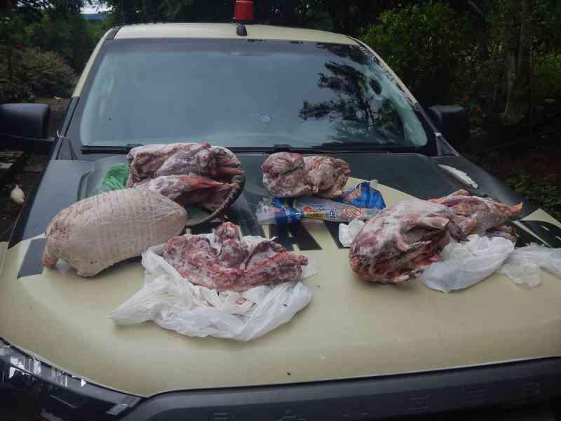 Polícia Militar Ambiental multa caçadores no interior de Abdon Batista, SC