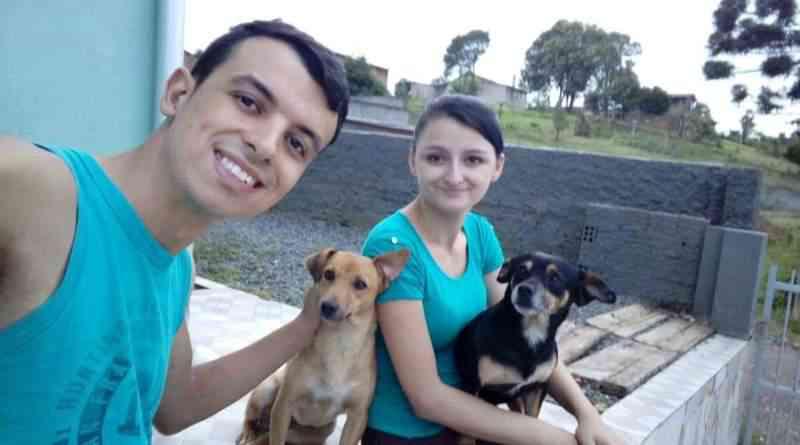 Cachorros são envenenados no bairro Serra Alta, em São Bento do Sul, SC