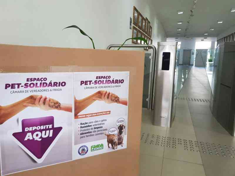 Frada realiza campanha para ajudar cães e cuidadores em Joinville, SC
