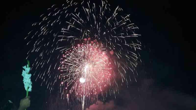 Câmara de Araraquara (SP) aprova proibição do uso de fogos de artifício com barulho