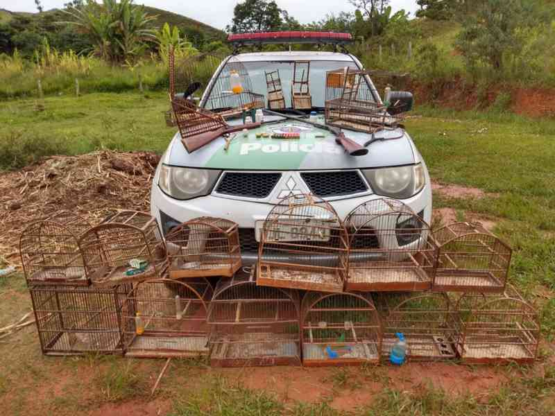 Homem é detido com espingardas e aves silvestres em Guaratinguetá, SP