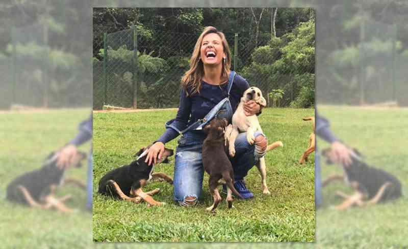 Luisa Mell é ameaçada de morte após resgate histórico de 1.700 animais