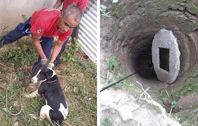 Grupamento de Bombeiros resgata cachorro que caiu em fossa profunda em Mairinque, SP