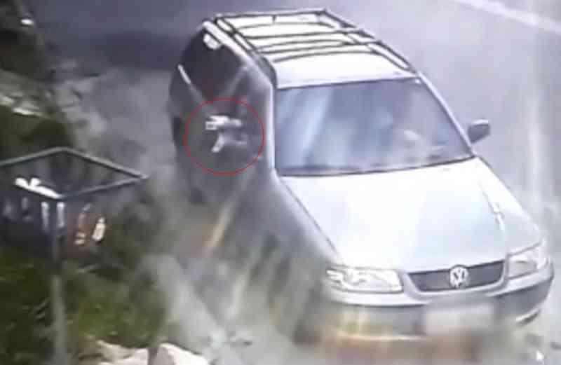 Vídeo mostra filhote de cachorro sendo arremessado para dentro de lixeira em Mogi das Cruzes, SP; assista