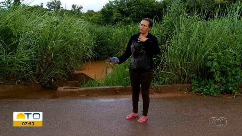 Moradora se indigna ao ver filhotes mortos em córrego — Foto: Reprodução/TV Anhanguera
