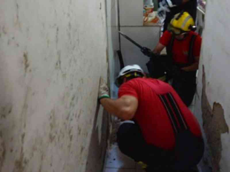 VÍDEO: Bombeiros resgataram cerca de 90 animais em Alagoas só em 2019