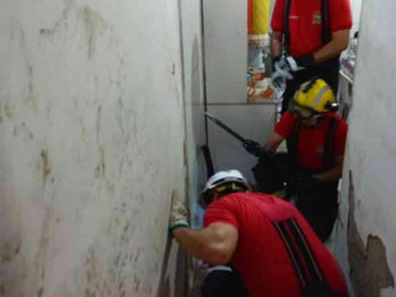 Em menos de três meses, Corpo de Bombeiros resgatou 240 animais em situação de risco em Alagoas