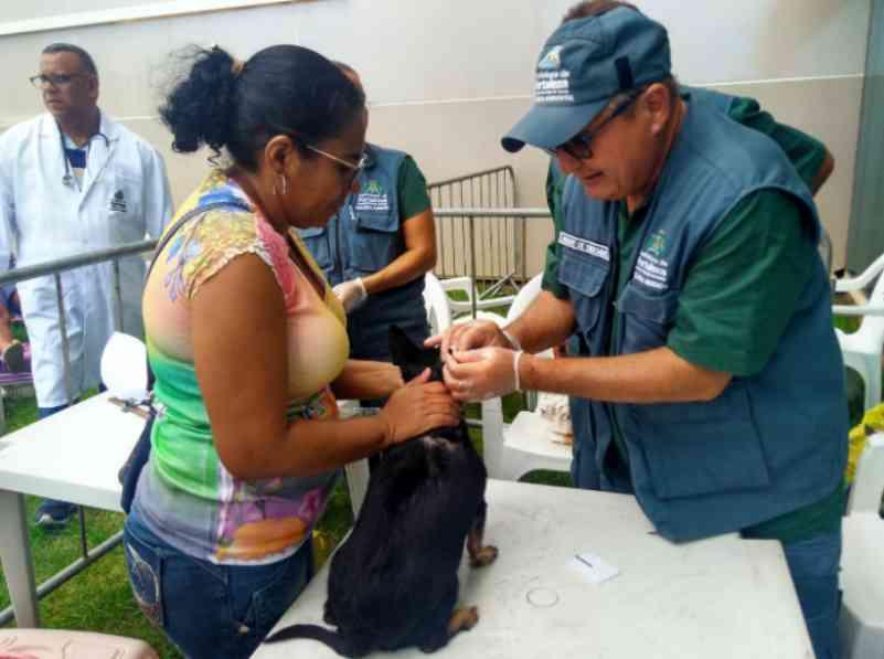 VetMóvel segue até sexta com atendimento veterinário gratuito no Campus do Pici, em Fortaleza, CE
