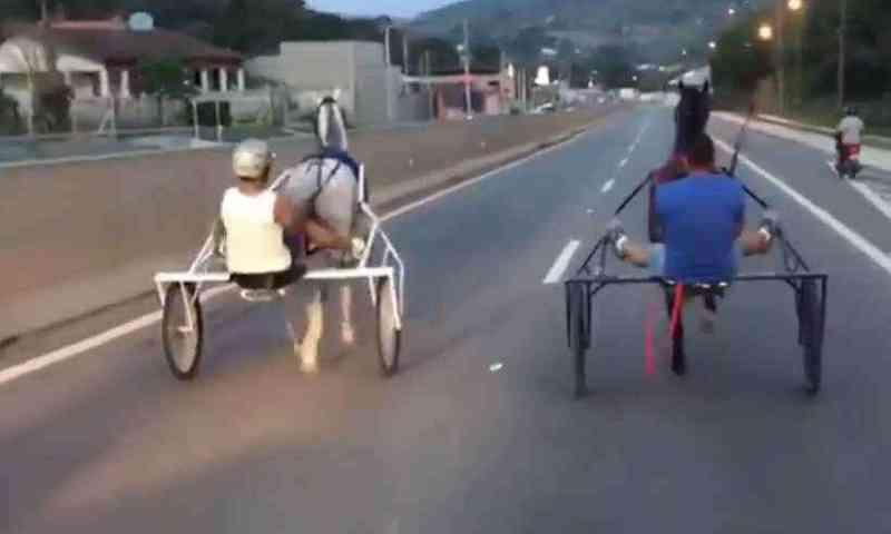 Câmara de Goiânia aprova proibição de uso de veículos com tração animal