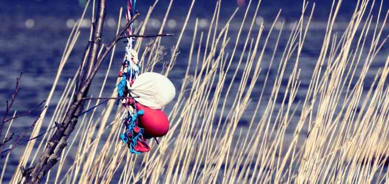 Gibraltar proíbe balões de gás para ajudar a salvar animais selvagens e marinhos