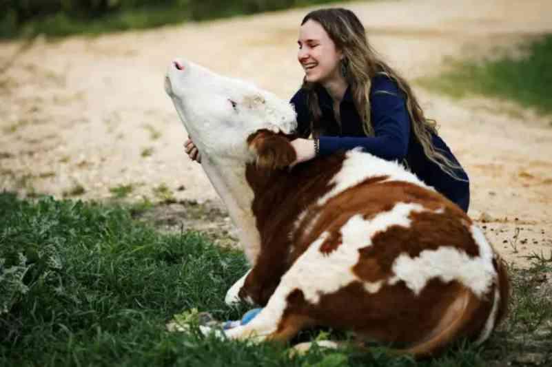 Animais com deficiência ganham vida nova em santuário de Israel