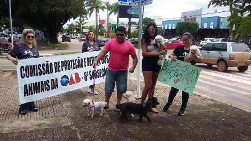 OAB realiza ato contra maus-tratos de animas; mais de 40 cães foram mortos nos primeiros meses em Alta Floresta, MT