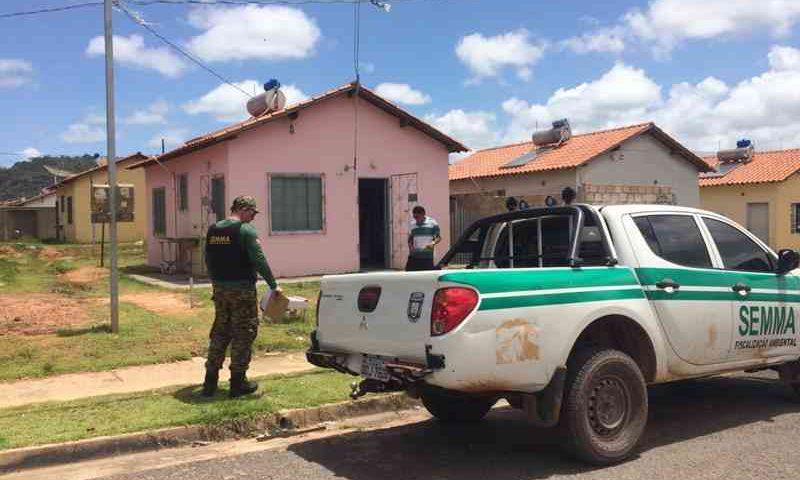 Caso de agressão ao cachorro foi filmado no Residencial Salvação, em Santarém — Foto: Semma/Divulgação
