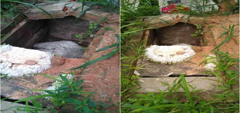 Cavalo é encontrado morto dentro de cova em cemitério no Piauí