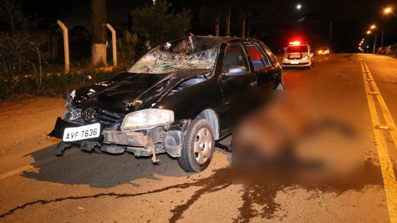 Cavalo solto na rua morre em acidente no Cará-Cará, em Ponta Grossa, PR
