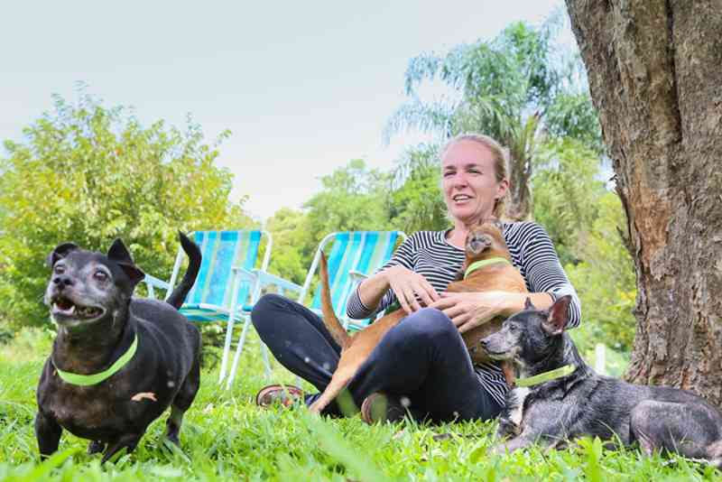 Protetora de cães e gatos faz campanha para comprar uma Kombi em Jaraguá do Sul, SC