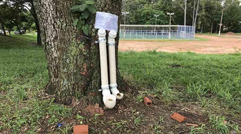 Educadora física instala comedouros para animais de rua em quatro pontos da cidade de Adamantina, SP