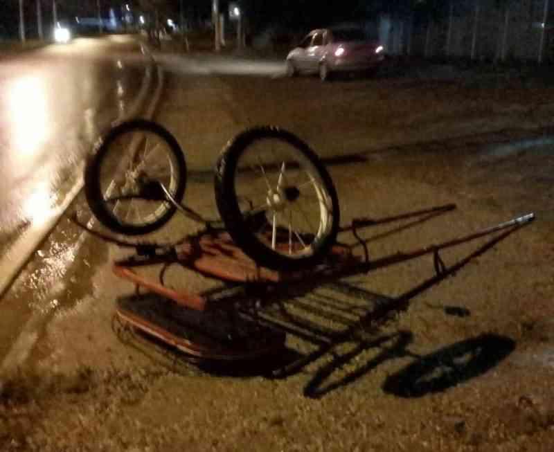 Câmeras registram charrete 'atropelada' por ônibus em Sorocaba (SP); cavalo foi sacrificado