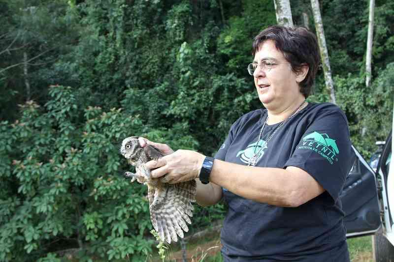 Prefeitura de Vinhedo (SP) e ONG Mata Ciliar reintegram animais à natureza após processo de reabilitação