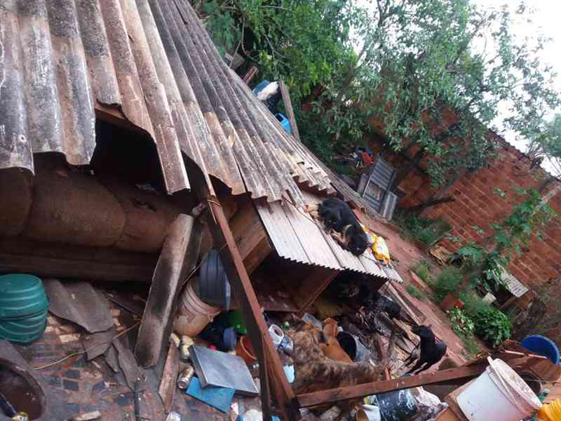 Telhado do abrigo para cães abandonados não resistiu à força do temporal em Bauru — Foto: Arquivo pessoal