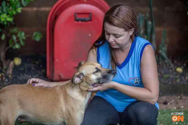 Casos de maus-tratos contra animais aumentam 115% em um ano em Ribeirão Preto, SP