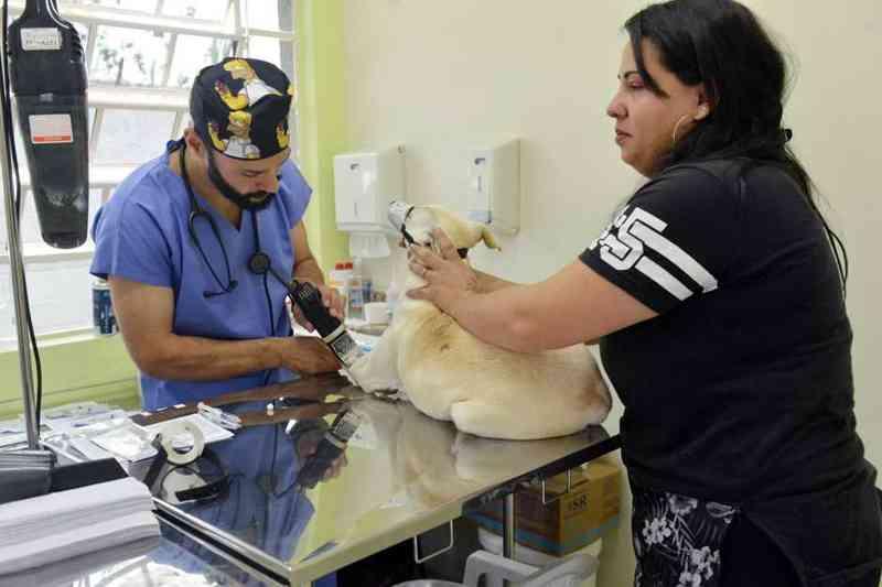 Prefeitura de São José dos Campos pretende castrar 5.000 animais - Charles Moura/Divulgação/PMSJC
