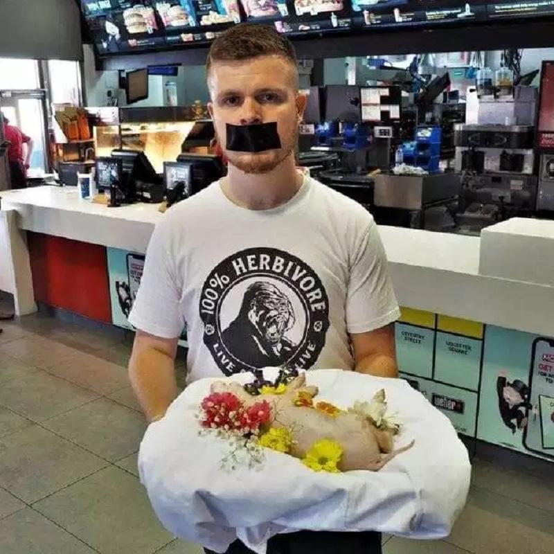 Ativista vegano que 'roubou um leitão e um bezerro' passou fome na cadeia depois de se recusar a comer a comida da prisão