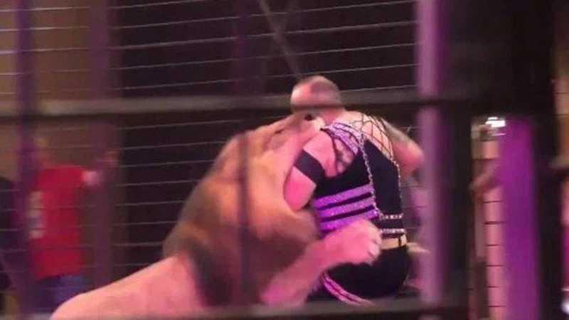 Hamada Kouta atacado por leão Foto: Reprodução/YouTube
