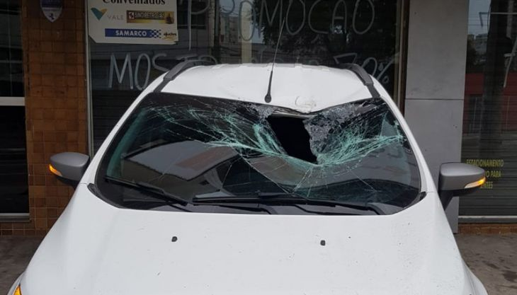 Cachorro sobrevive após cair de prédio em cima de carro em Vitória, ES