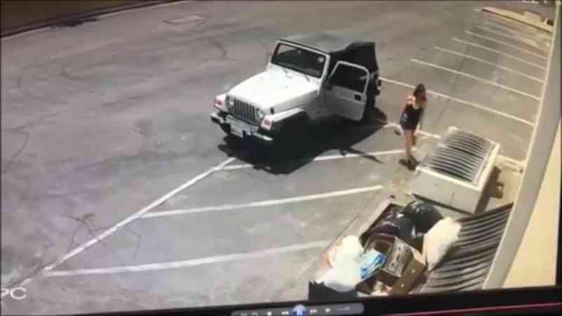 Mulher é flagrada em vídeo ao jogar uma sacola plástica com filhotes de cachorro perto de uma lata de lixo