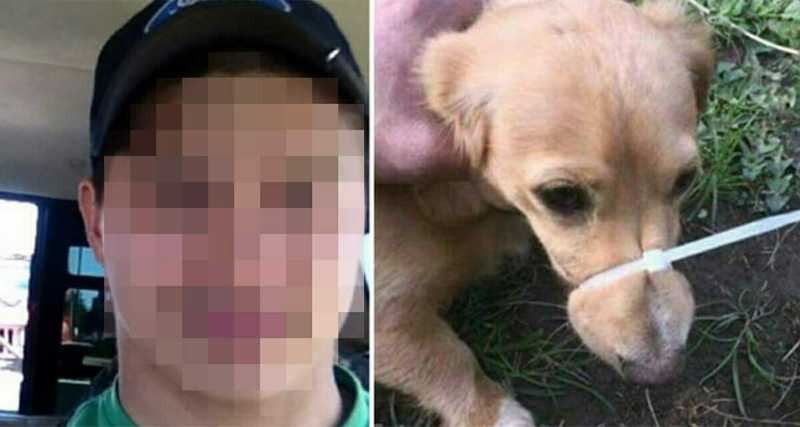 Homem amarra a boca do cachorro para ele parar de latir, se gaba na internet e gera revolta
