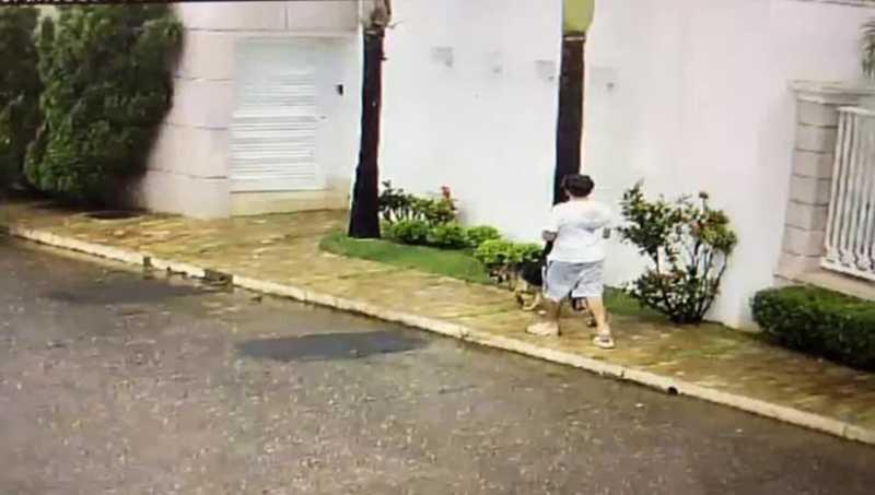 Vídeo mostra cadela sendo agredida em Patos de Minas (MG); animal é resgatado após ordem da Justiça