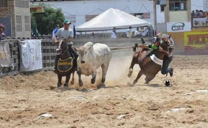 Sem autorização: Vaquejadas continuam proibidas por liminar em Rondonópolis, MT