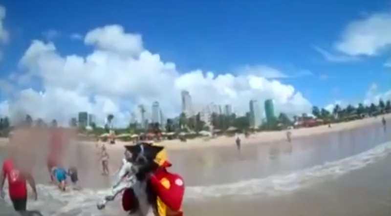 Cachorra é resgatada no mar por bombeiros, na praia de Cabo Branco, em João Pessoa, PB