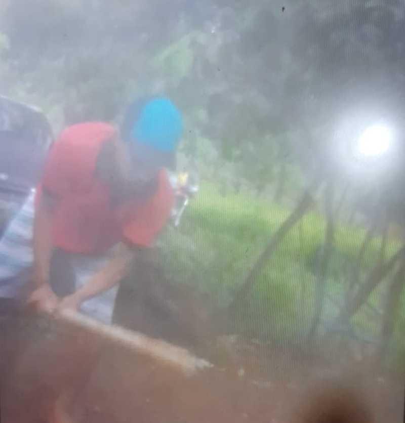 Jovem grava vídeo matando gato a pauladas no Piauí, diz PM — Foto: Divulgação/PM