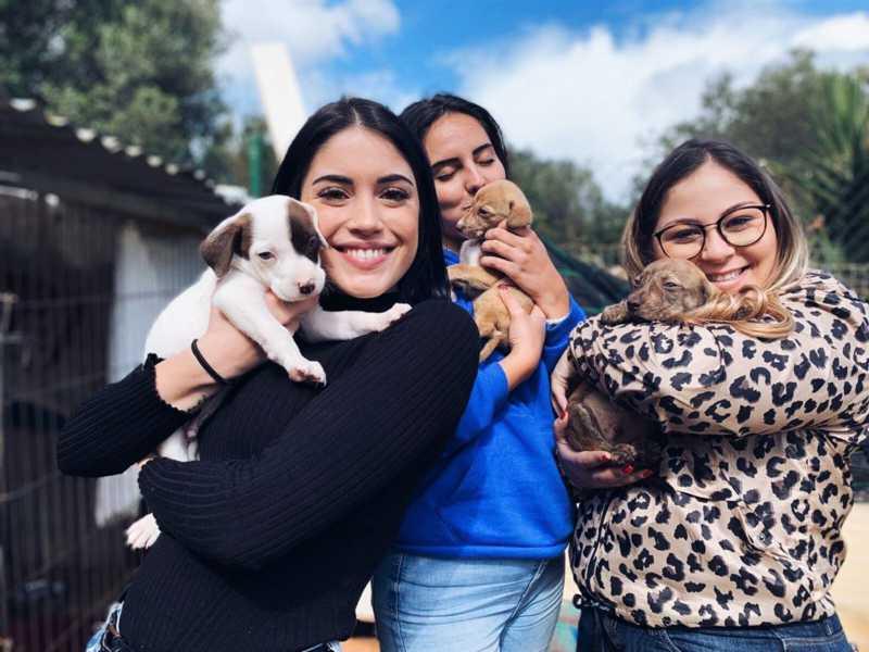 Associação Académica entrega donativos para apoiar animais de rua no Algarve, em Portugal