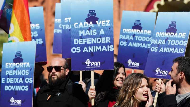 Marcha Animal juntou centenas em Lisboa pelos direitos dos animais