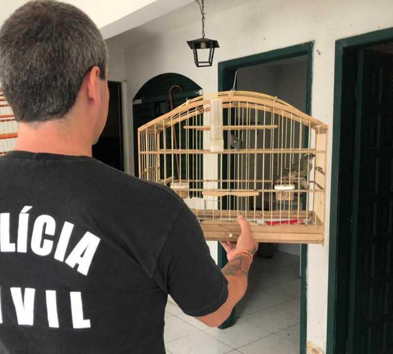 Polícia Civil apreende 250 animais silvestres em Curitiba e região